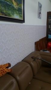 ốp tường nhựa bản 30cm