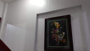 ốp tường nhựa bản 40cm